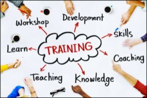 How to Know About Best Training Courses in Cairo?